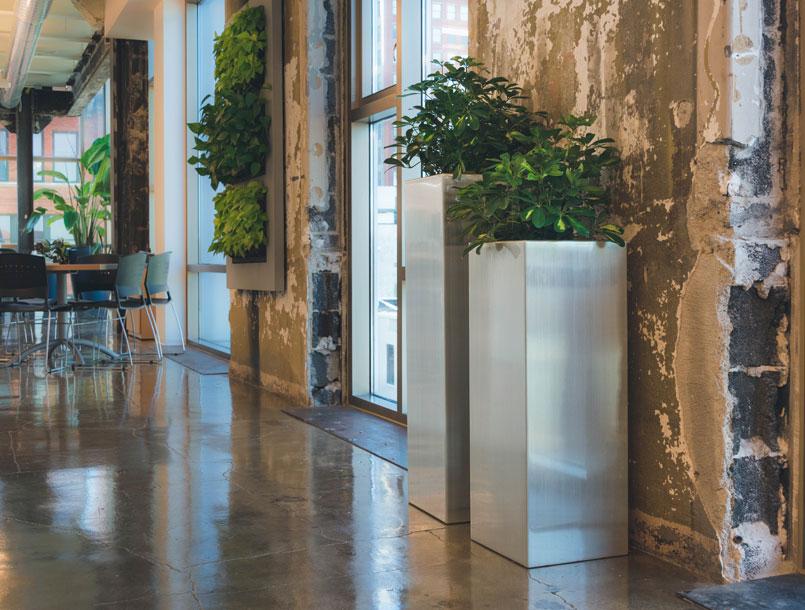 aluminum planters in biophilic office